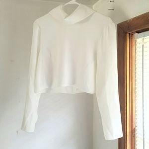 Aritzia Babaton Crop Long Sleeve Blouse